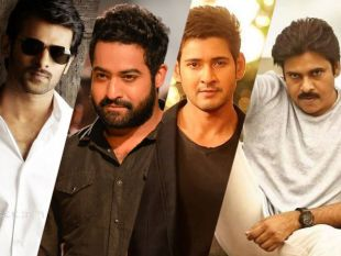 Telugu Actors With The Largest Fanbase