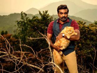 16 Upcoming Movies Of 'Makkal Selvan' Vijay Sethupathi