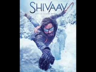 Ajay Devgn's Shivaay Box Office Prediction Report