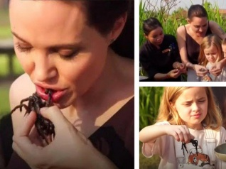 Angelina Jolie And Her Children Eat Tarantulas!