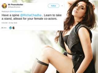 Richa Chadda Is A HYPOCRITE, Twitterati Hits Out Against Her