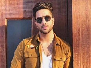 Is YHM's Aly Goni Part Of Khatron Ke Khiladi 9?
