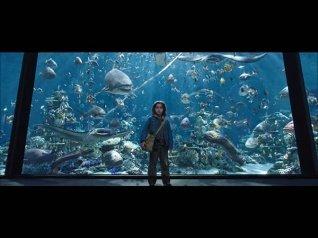 Aquaman Tamil Version Full Movie LEAKED Online!