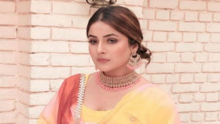 Shehnaz Does Not Want To Work With Other BB13 Housemates