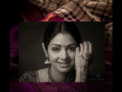 Sridevi's Saree Put Up For Auction By Boney Kapoor