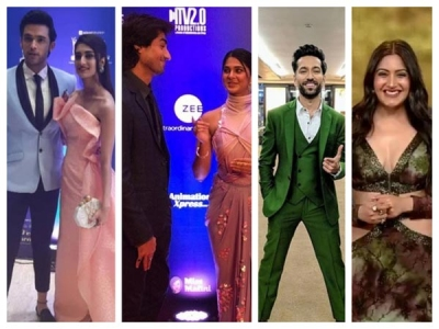 ITA 2019: JenShad, NaRbhi & Other Sizzles At The Red Carpet