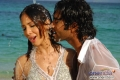 Kim Sharma & Navdeep