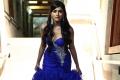 Mugamoodi Actress Pooja Hegde