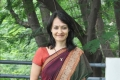 Amala Akkineni in Saree