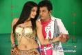 Priyamani and Shivrajkumar
