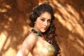 Samiksha Singh