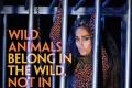 Jiah Khan's PETA Print Ad