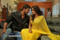 Prince and Dimple Chopra Romance Movie