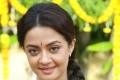Surveen Chawla in Kannada Movie Abhimanyu