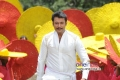 Actor Darshan in Brindavana