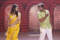 Shanvi Srivastava and Chiranjeevi Sarja in Kannada Film Chandralekha