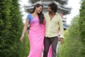 Sonakshi Sinha and Shahid Kapoor still from Dhokha Dhadi song of film R... Rajkumar