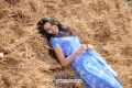 Sindhu Lokanath in Kannada Movie Love in Mandya