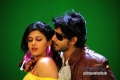 Sonu Chabra and Prajwal Devaraj in Kannada Movie Savaal