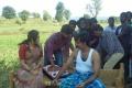Sathuranga Vettai