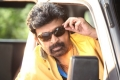 Rajasekhar still from Gaddam Gang Movie