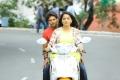 Arya and Anushka Shetty