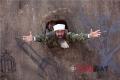 Paddy in Tere Bin Laden: Dead or Alive