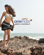 Telugu Movie AK Rao PK Rao Photo