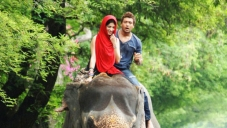 Shruti Haasan and Suriya