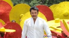 Actor Darshan in Brindavana