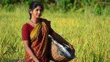 Yagna Shetty in Kannada Movie Ulidavaru Kandante