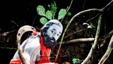 Marudhanayagam