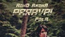 Adho Andha Paravai Pola