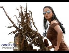 Chandni Dey Photos