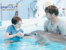 Dolphin Tale Photos