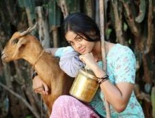 Karthika Nair Photos