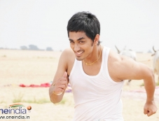 Sidharth Photos