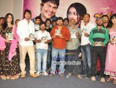 Jananam Film Audio Release Photos