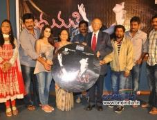 Madhumati Audio Launch Photos