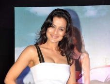 Ameesha Patel at first look launch of film Desi Magic Photos