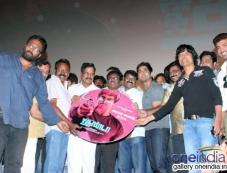 Jigarthanda audio launch Photos