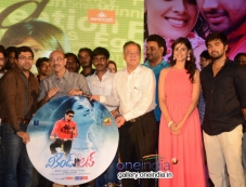 Weekend Love Audio Launch Photos