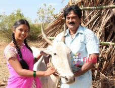 Kannada Movie Gopala Photos