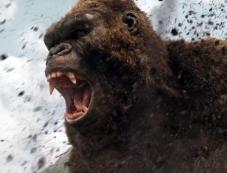 Kong: Skull Island Photos