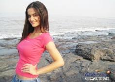 Shalini S Sahuta