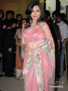 Mrinalini Sharma