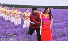 Balakrishna and Sheela