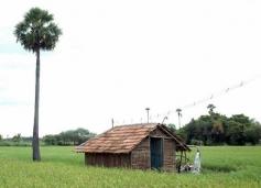 Kalavani