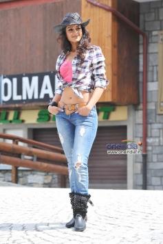 Ileana D'Cruz New Pics