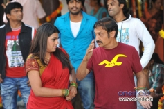 Actress Tashu Kaushik in Telugu Movie Still Dula Seenu